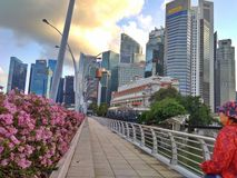 Singapore - garden city royalty free stock images