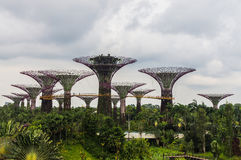 Singapore. Gardens by the Bay. View From Bridge Spanning 101 hectares of reclaimed land in central Singapore, adjacent to the Marina Reservoir Stock Photo