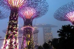 Singapore. Gardens by the Bay. Marina Bay Sands. Heavy rain Stock Photo