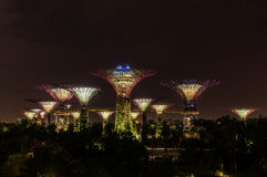 Singapore. Gardens by the Bay. Supertrees Grove Spanning 101 hectares of reclaimed land in central Singapore, adjacent to the Marina Reservoir Royalty Free Stock Photo