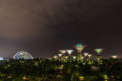 Singapore. Gardens by the Bay. Supertrees Grove Stock Photography