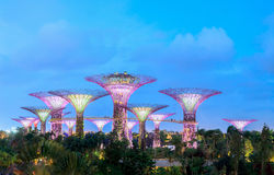 Singapore. Gardens by the Bay is a park spanning 101 hectares of Royalty Free Stock Photo
