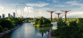 Singapore Gardens by the Bay. View of Singapore's Gardens by the Bay park, with Supertrees and the Singapore Flyer big wheel royalty free stock photos