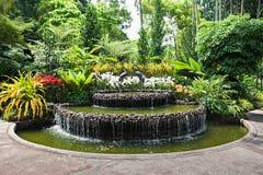 Singapore Gardens Royalty Free Stock Photo