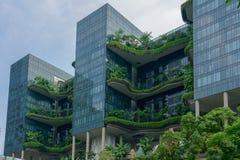 Singapore - giugno 310 2018: Hotel reale del parco a Singapore, calle immagini stock
