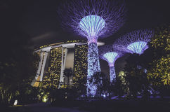 singapore horisont Royaltyfri Bild