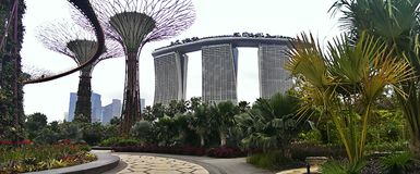 Singapore hotel and gardens. Tropical gardens at the Marina Bay Sands Hotel and Casino, Singapore royalty free stock photos