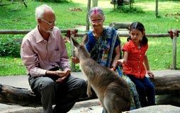 Singapore: Indian Family Feeding Kangaroo Royalty Free Stock Photos