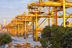 Singapore Industry Harbor. Large gantry cranes at Singapore PSA industry harbor, one of the worlds largest container transhipment hubs Stock Photography