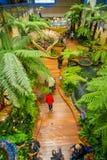 SINGAPORE SINGAPORE - JANUARI 30, 2018: Ovanför inomhus sikt av folk som går i en liten trädgård med växter inom av Royaltyfri Fotografi