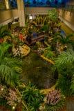 SINGAPORE SINGAPORE - JANUARI 30, 2018: Ovanför sikt av folk i en liten trädgård med växter och ett ursnyggt pund med a Arkivbilder