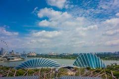 SINGAPORE SINGAPORE - JANUARI 30, 2018: Ovanför sikt av molnet Forest Flower Dome på trädgårdar vid fjärden i Singapore med Royaltyfri Fotografi