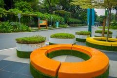 SINGAPORE SINGAPORE - JANUARI 30, 2018: Utomhus- sikt av den färgrika för Singapore Sentosa för stolar nästan bilen kabel och Fotografering för Bildbyråer