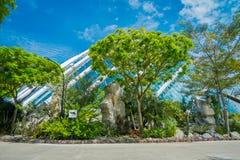 SINGAPORE SINGAPORE - JANUARI 30, 2018: Utomhus- sikt av molnet Forest Flower Dome på trädgårdar vid fjärden i Singapore Royaltyfri Fotografi
