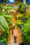 SINGAPORE, SINGAPORE - JANUARY 30, 2018: Above Indoor view of people walking in a small garden with plants inside of. Singapore Changi Airport. Singapore Changi Royalty Free Stock Photo