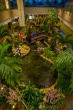 SINGAPORE, SINGAPORE - JANUARY 30, 2018: Above view of people in a small garden with plants and a gorgeous pound with a. Koi fish inside of Singapore Changi Stock Images