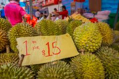 SINGAPORE, SINGAPORE - JANUARY 30. 2018: Close up of durian fruit, the famous tropical fruit in asian countries with its. Thorny skin but delicious and tasty stock image