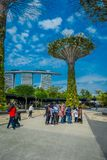 SINGAPORE, SINGAPORE - JANUARY 30, 2018: Unidentified people walking under a supertree at Gardens by the Bay. The tree. Like structures are fitted with Royalty Free Stock Photography