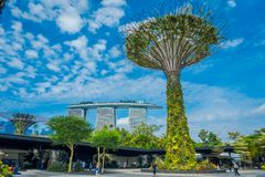 SINGAPORE, SINGAPORE - JANUARY 30, 2018: Unidentified people walking under a supertree with a Marina Bay building behind stock images