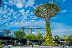 SINGAPORE, SINGAPORE - JANUARY 30, 2018: Unidentified people walking under a supertree with a Marina Bay building behind. The tree-like structures are fitted Royalty Free Stock Image