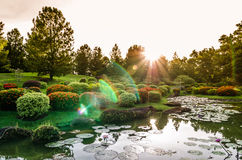 Singapore Japanese Garden. Sunset view of Singapore Japanese Garden Royalty Free Stock Images