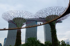 SINGAPORE - JULI drieëntwintigste, 2016: Dagmening van het Supertree-Bosje bij Tuinen door de Baai Het overspannen van 101 hectar Stock Foto's