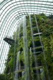 SINGAPORE - JULY 23rd, 2016: Inside of the Cloud Forest Dome - Garden by the Bay Royalty Free Stock Image