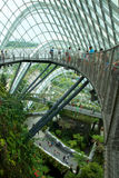 SINGAPORE - JULY 23rd, 2016: Inside of the Cloud Forest Dome - Garden by the Bay Royalty Free Stock Images