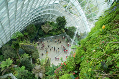 SINGAPORE - JULY 23rd, 2016: Inside of the Cloud Forest Dome - Garden by the Bay Royalty Free Stock Photography