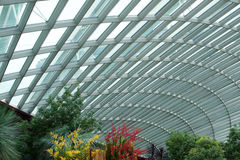 SINGAPORE - JULY 23rd, 2016: Inside of the Flower Dome - Garden by the Bay Stock Photos