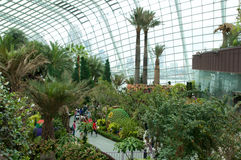 SINGAPORE - JULY 23rd, 2016: Inside of the Flower Dome - Garden by the Bay Stock Photo