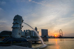 SINGAPORE - June 6 : Merlion park at dawn with sunrise scene in Royalty Free Stock Photography