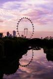 SINGAPORE -JUNE 19: Singapore Flyer - the Largest Ferris Wheel i Royalty Free Stock Image