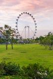SINGAPORE -JUNE 19: Singapore Flyer - the Largest Ferris Wheel i Stock Images