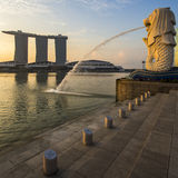 Singapore landmark Merlion with sunrise. With detail Stock Photos