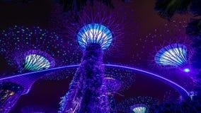 Singapore ljusshow i trädgårdar vid fjärden Seampess ögla lager videofilmer