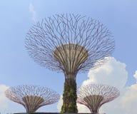Tuinen door de Baai Stock Foto's