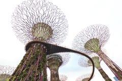 Tuinen door de Baai Stock Foto