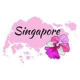 Singapore map with Orchid Vanda Royalty Free Stock Photography