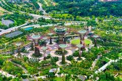 SINGAPORE - MARS 19: Nattsikt av den Supertree dungen på Garde Arkivbild
