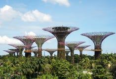 Singapore-mars 2016 Trädgårdar vid fjärden i Marina Bay i Singapore, mars 2016 Arkivfoton
