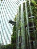 SINGAPORE - MARS 27, 2016: Vattenfall i molnskog på trädgårdar vid fjärden arkivbild