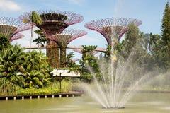 Singapore marzo 2016 Giardini dalla baia in Marina Bay a Singapore, marzo 2016 Fotografia Stock