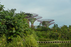 SINGAPORE - MAY 12: Gardens by the Bay on Mar 12, 2014 in Singap Royalty Free Stock Photography
