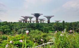SINGAPORE - May 7, 2017: Gardens by the Bay park panorama stock image