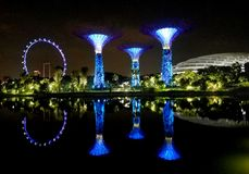 SINGAPORE - May 7, 2017: Super trees illuminated in the Gardens by the Bay park stock image