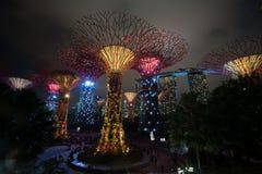 Singapore natthorisont på trädgårdar vid fjärden Royaltyfri Bild