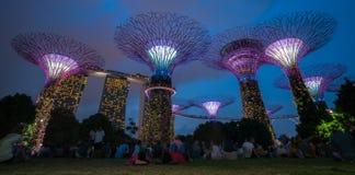 Singapore natthorisont på trädgårdar vid fjärden Arkivbild