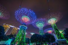 Singapore - November 19, 2017: Supertree Grove Show, Singapore S royalty free stock images