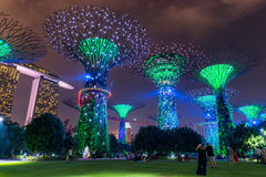 Singapore - October 23, 2016: Colorful of lighting show in Singa Stock Photography